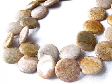 Fossilized Coral Flat Pear Pendant Bead Strand 107084