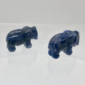 Wild 2 Hand Carved Sodalite Elephant Beads | 22.5x21x10mm | Blue white - PremiumBead