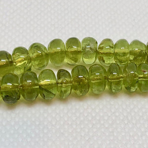 5 Sparkling Smooth 7x4-7x3mm Peridot Roundel Beads 6761 - PremiumBead Alternate Image 2