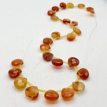Load image into Gallery viewer, Sparkling! 3 Carnelian Agate Briolette 13x13x6mm Beads - PremiumBead
