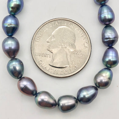 12 Lavender, Blue, Pink Peacock Satin FW Pearls, 10x6.5 to 8x6mm - PremiumBead