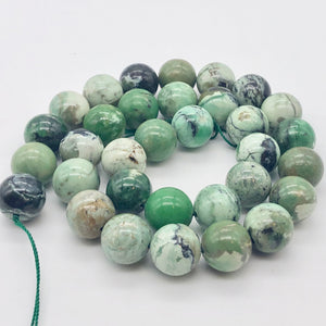 Very Rare Spiderweb Green Turquoise 12mm Bead Strand 107535 - PremiumBead