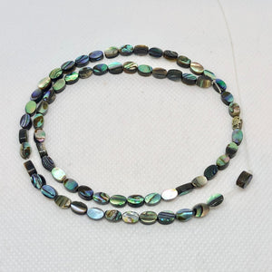 Gorgeous! Abalone Oval Coin 6x4mm Bead Strand! 104556 - PremiumBead Alternate Image 2