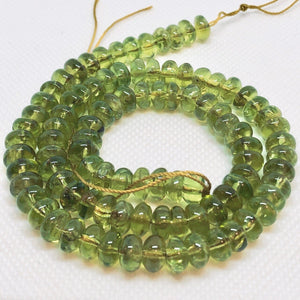 5 Sparkling Smooth 7x4-7x3mm Peridot Roundel Beads 6761 - PremiumBead Alternate Image 3