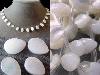 White Ebony Shell Faceted Briolette Bead Strand 104331 - PremiumBead