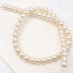 6 Premium Perfect Skin Natural White 8mm Pearls 10059