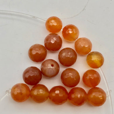 16 Luscious! Faceted 6mm Natural Carnelian Agate Beads - PremiumBead Primary Image 1