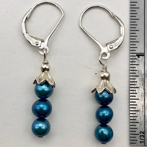 "Shining Teal Fresh Water Pearl Sterling Silver Lever Back Earrings | 1/2"" long 