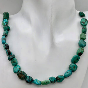 "160cts 16"" Natural USA Turquoise Pebble Beads Strand 106696H - PremiumBead Alternate Image 5"