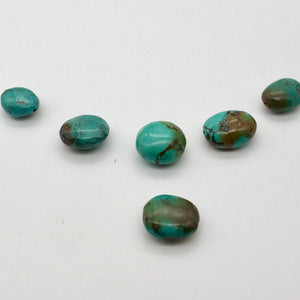 Amazing! 6 Genuine Natural Turquoise Nugget Beads 135cts 010607V - PremiumBead