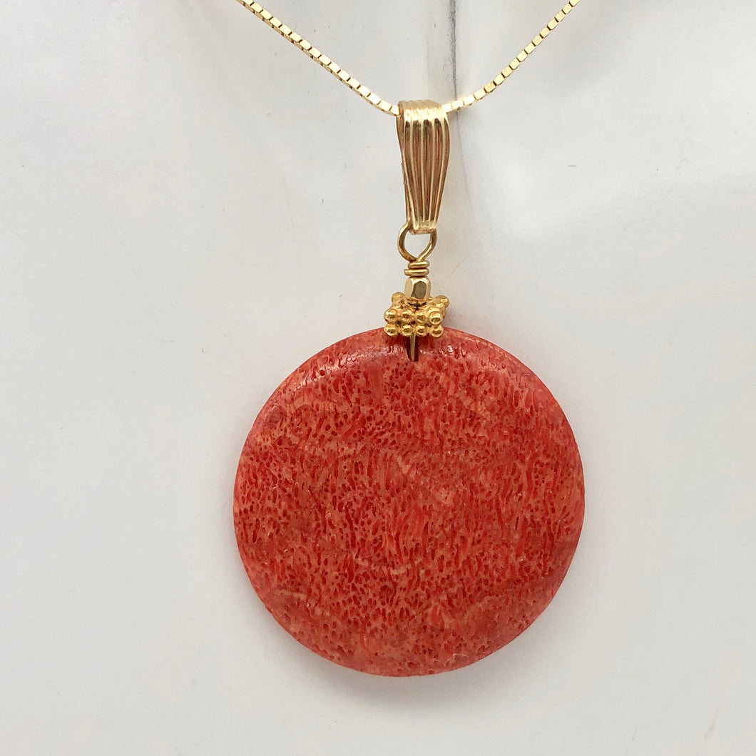 Big Cell Red Coral Disc & 14K Gold Filled Pendant | 30mm, 1.88