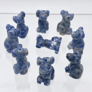 Faithful 2 Sodalite Hand Carved Dog Beads | 20x12x10mm | Blue/Grey - PremiumBead Alternate Image 10