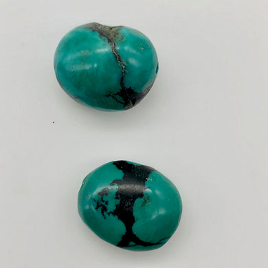 Natural Turquoise Oval Skipping Stones | 20x15mm | Blue/Green | Oval | 2 Beads | - PremiumBead
