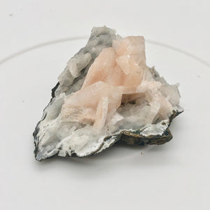 Pink Stilbite Crystals on bed of Apophyllite Collecter's Specimen | 55x48x22mm - PremiumBead Alternate Image 4