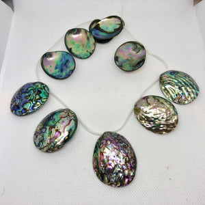 Designer! (1) Natural Abalone Shell 32x27x5 to 45x39x11mm Briolette Bead 009909 - PremiumBead