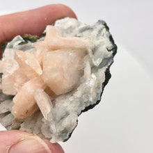 Load image into Gallery viewer, Pink Stilbite Crystals on bed of Apophyllite Collecter's Specimen | 55x48x22mm - PremiumBead Alternate Image 9