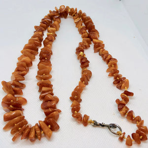 "Butterscotch Amber Graduated Nugget Bead 34"" NECKLACE 210790 - PremiumBead Primary Image 1"