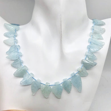 Natural Aquamarine Leaf Strand | 17x12x3 to 22x12x5mm | Blue | Leaf | 33 beads | - PremiumBead