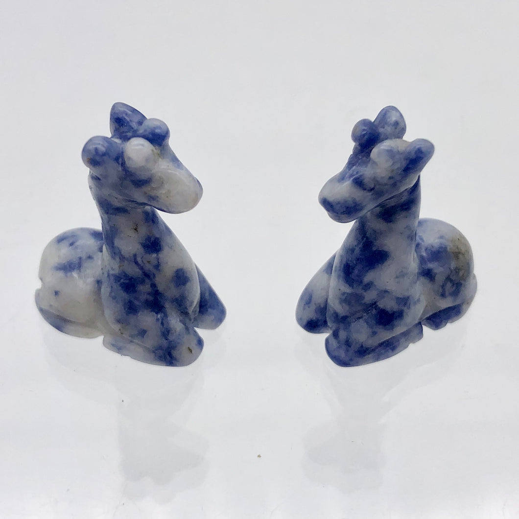 Graceful 2 Carved Sodalite Giraffe Beads | 21x16x9mm | Blue/White - PremiumBead Primary Image 1