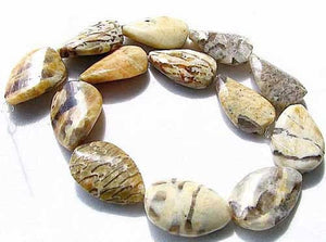 3 Wild Cat Feldspar Carved Teardrop Twist Pendant Beads 008904 - PremiumBead