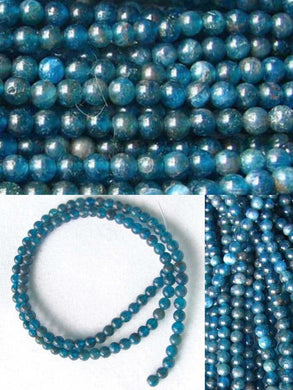 17 Blue Apatite 4mm Round Beads 008889A - PremiumBead Primary Image 1