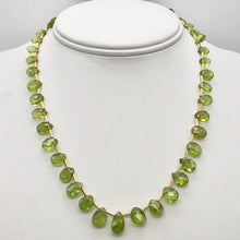 Load image into Gallery viewer, Natural Green Peridot Briolette and 14k GF 17 inch Necklace 203347 - PremiumBead