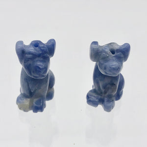 Faithful 2 Sodalite Hand Carved Dog Beads | 20x12x10mm | Blue/Grey - PremiumBead Alternate Image 6