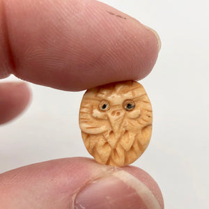 Pair of Wise Owl Carved Beads | 2 Beads | 16x13x5mm | 8625 - PremiumBead Alternate Image 7