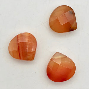 Sparkling! 3 Carnelian Agate Briolette 13x13x6mm Beads - PremiumBead