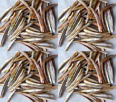 20 Bronze Mussel Shell Double Drill Plank Beads 008096 - PremiumBead Primary Image 1
