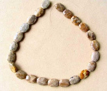 Load image into Gallery viewer, Stellar 3 Fossilized Coral Cameo Cut Beads 7384A - PremiumBead