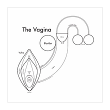 Load image into Gallery viewer, Vagina Print