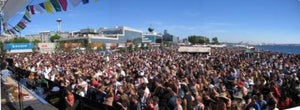 Hempfest® 2006 (Crowd Shot)