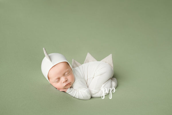 Dinosaur Pajama Set - Willow Mint Props