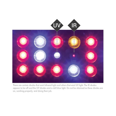 KIND LED K3 Series2 XL600 LED Grow Light - Everything But The Plant