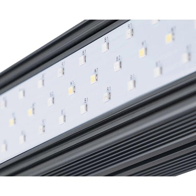 KIND LED X Series XD75/XD150 Bar Light - Everything But The Plant