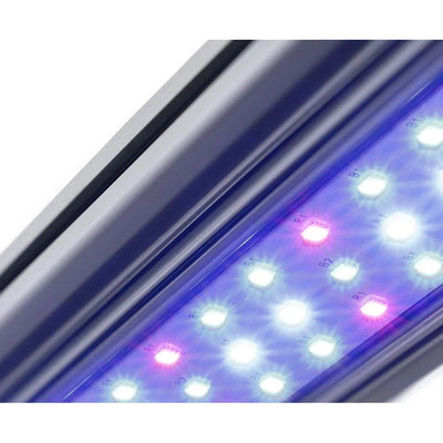 KIND LED X40 Bar Light - Everything But The Plant