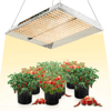 Mars TS 1000 Quantum Board Led Grow Light - Everything But The Plant
