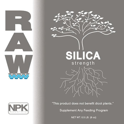 RAW SILICA - Everything But The Plant