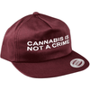 """Not a Crime"" Unconstructed Hat in Maroon - Everything But The Plant"