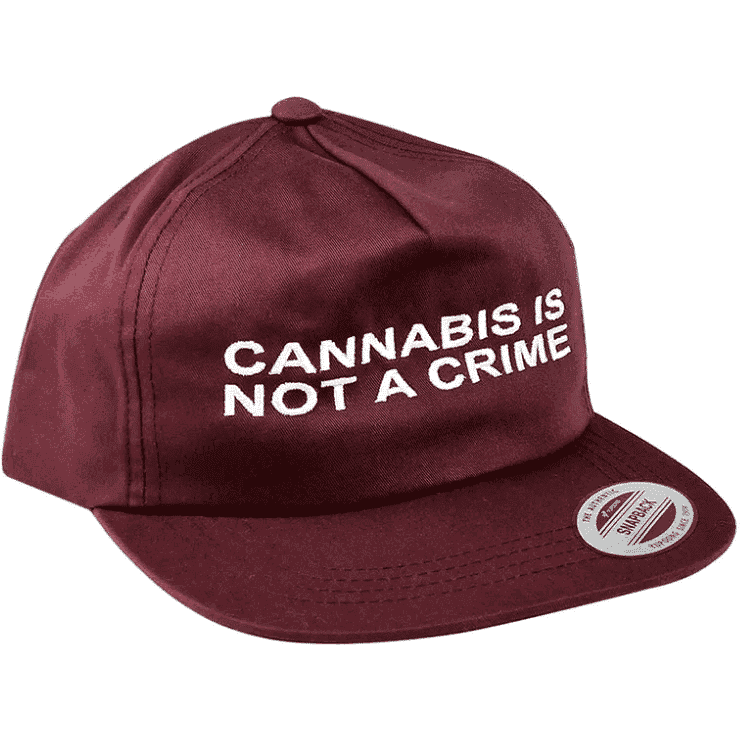 """Not a Crime"" Unconstructed Hat in Maroon"
