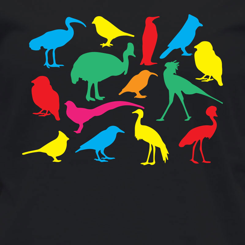 Box of Birds T