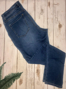 Renee Plus Size Jeans