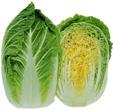 Cabbage Chinese (Wombok) Each