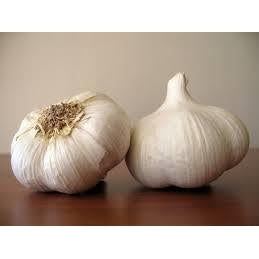 Garlic Choice Bulb (Each)