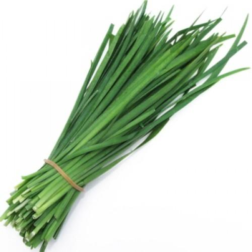 Herb - Garlic Chive Bnch