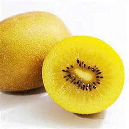Kiwifruit Golden Each