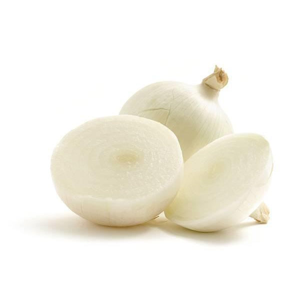 Onion White Medium (Each)