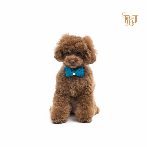 P. Bee & Joanne - Morgan Bow Tie Collar - Aquamarine - img 1