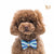 P. Bee & Joanne - Zane Bow Tie Collar - Tri-coloured Pastel Bleu, Violet and Ecru - img 2